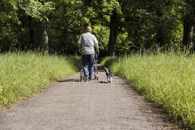 Vista traseira do homem sênior passeando com rodas walker e seu cão na natureza — Fotografia de Stock