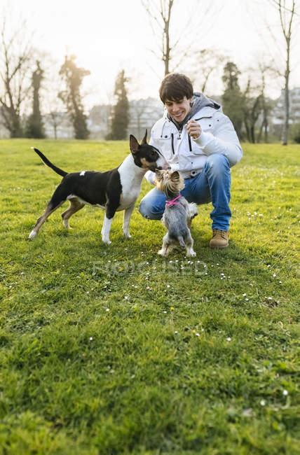 Молодой человек играет с собаками на зеленом лугу — стоковое фото