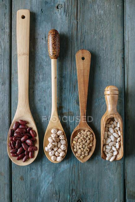 Reihe von vier verschiedenen Kochlöffeln mit verschiedenen Hülsenfrüchten — Stockfoto