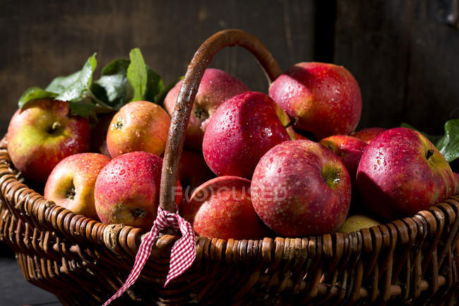 Wicker basket of organic red apples — Stock Photo