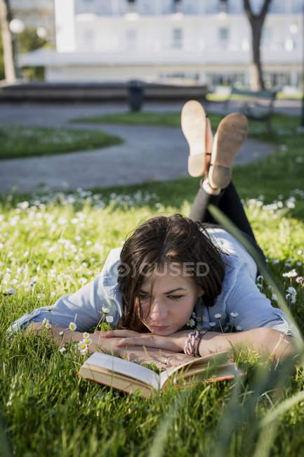 В парке книга знакомство