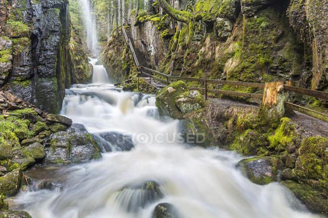 Германия, Баден-Вюртемберг, Менценшванд, Водопад — стоковое фото