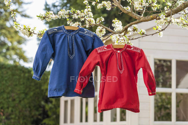 Farmers' shirts hanging on tree in garden — Stock Photo