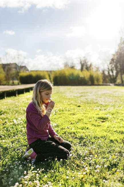 Little girl crouching on meadow and smelling daisy — Stock Photo