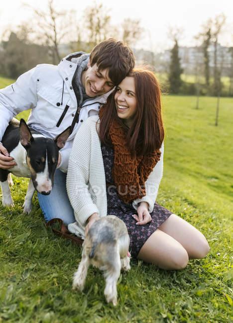 Giovani coppie con i loro cani su un prato — Foto stock