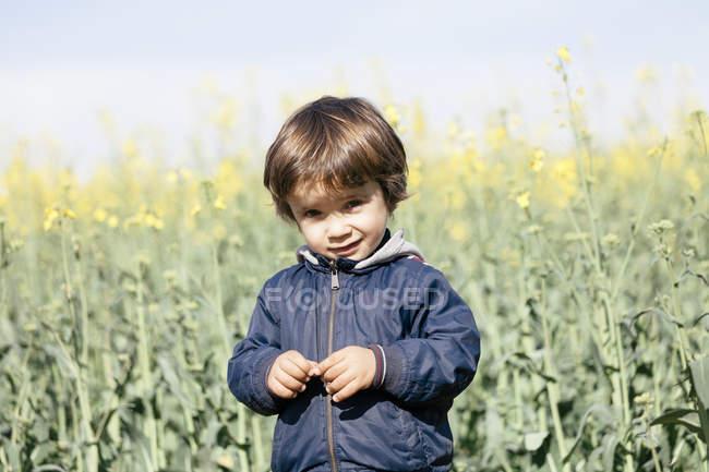Portrait d'un petit garçon debout devant un champ de viol, regardant une caméra — Photo de stock