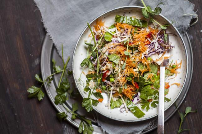 Salada arco-íris com folhas de espinafre, ervilhas, cenoura, brotos de feijão mungo, quinoa, salsa, brotos de ervilha e repolho roxo — Fotografia de Stock