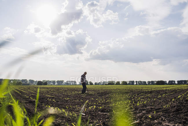 Farmer standing in a field — Stock Photo