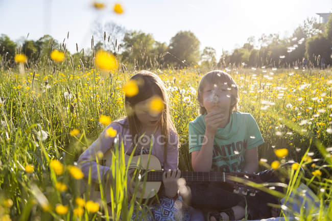 Brother and sister sitting together on field of flowers playing guitar and blowing blowball — Stock Photo