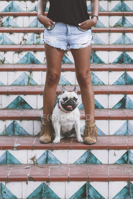 Dog standing between legs of owner on stairs — Stock Photo
