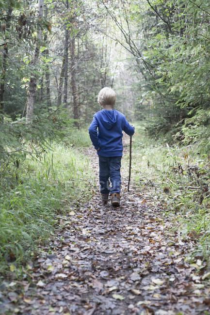 Vue arrière d'un petit garçon blond marchant sur une piste forestière — Photo de stock