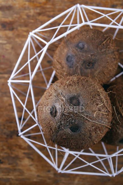 Primer plano de tres cocos en tazón blanco sobre mesa de madera - foto de stock
