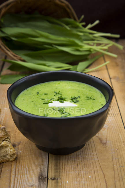 Bol de soupe à l'ail et Robert fraîche feuilles sur fond — Photo de stock
