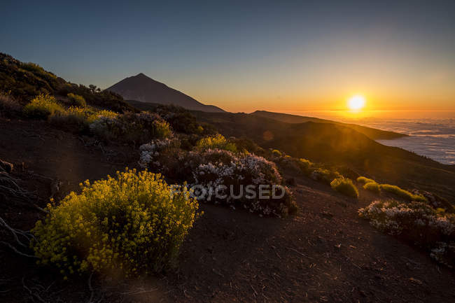 Spain, Tenerife, dirt road at Pico del Teide region — Stock Photo
