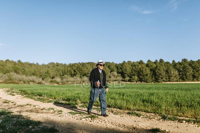 Старший ходит с палками в поле — стоковое фото