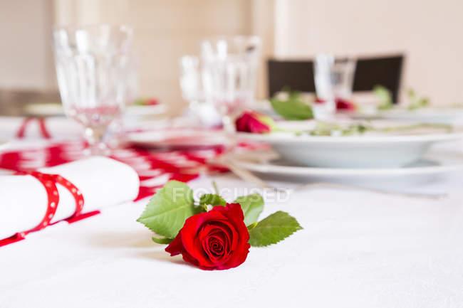 Крупним планом подання Червона троянда на накритий стіл — стокове фото