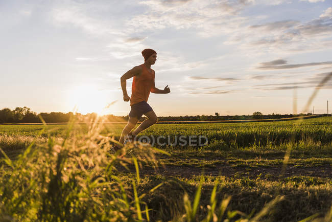 Young man jogging, against the sun — Stock Photo