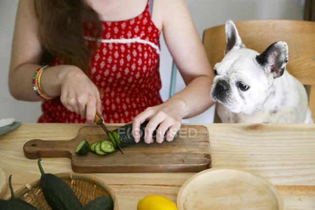 Bulldog francese guardando donna taglio cetriolo sul tavolo — Foto stock