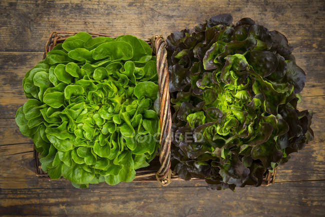Wicker basket with leaf salads — Stock Photo