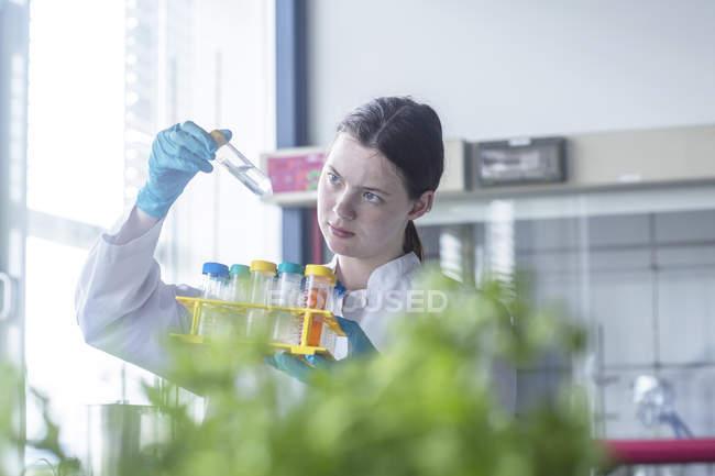 Técnico de laboratório feminino examinar a amostra em laboratório — Fotografia de Stock