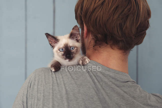Back view of man with kitten on his shoulder — Stock Photo