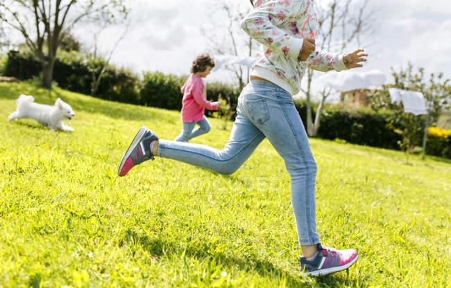 Dos hermanas pequeñas corriendo en un prado con su perro - foto de stock