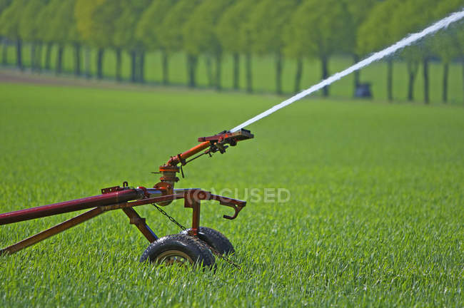 Close-up of Sprinkler system on green field — Stock Photo