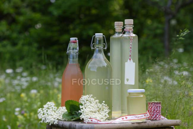 Sirup de sabugueiro e ruibarbo em garrafas e vidro — Fotografia de Stock