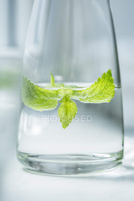 Glass bottle of water flavored with lemon balm — Stock Photo