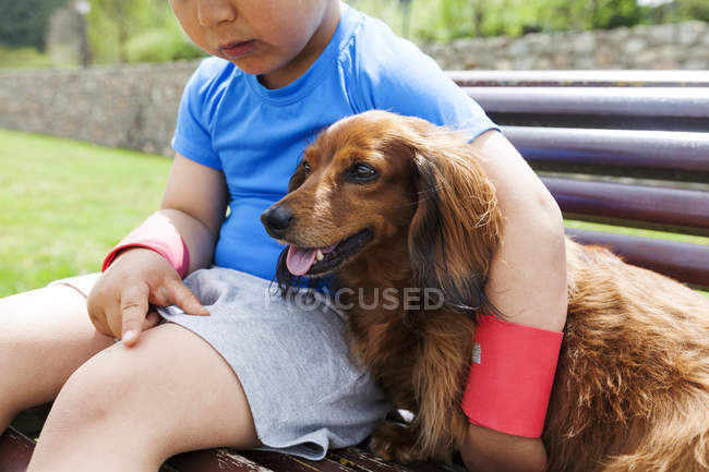 Little boy with dog sitting on a bench — Stock Photo