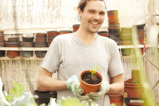 Усміхнений чоловік тримає вазон з Moringa розсади — стокове фото