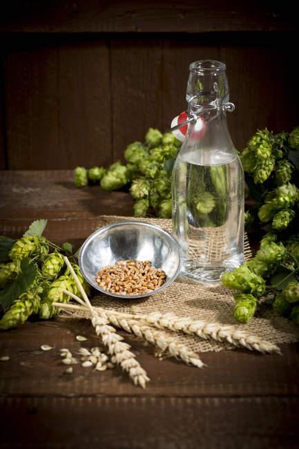 Ingedients для пивоваріння, води, ячменю, хміль та солод — стокове фото