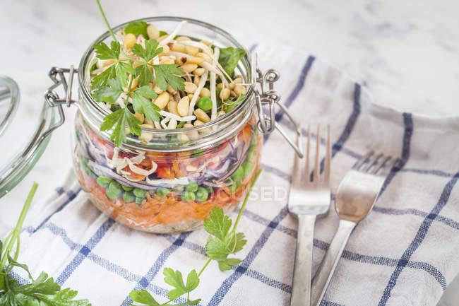 Веселка салат з квіноа, моркву, горох, Червона капуста, солодкий перець і Мен бобові паростки — стокове фото