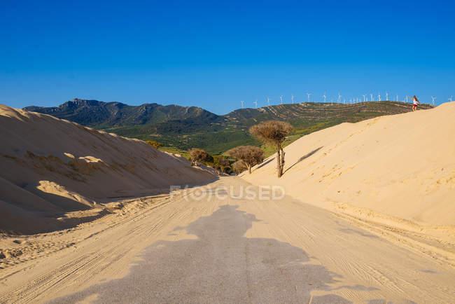 Дорога між дюни в Пунта Paloma Tarifa, Андалусия, Іспанія — стокове фото