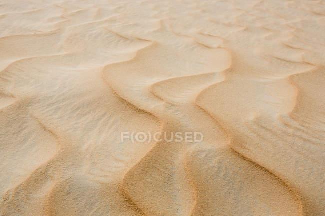 UAE, Rub' al Khali, ripple marks in the desert sand, close-up — Stock Photo