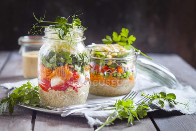 Веселка салати в банки з квіноа, моркву, горох, Червона капуста, солодкий перець і Мен бобові паростки — стокове фото
