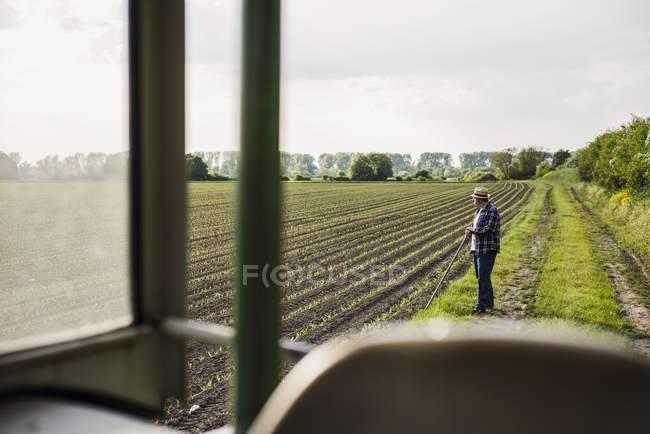 Bauer auf einem Feld stehen — Stockfoto