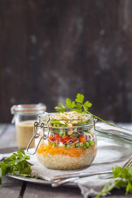 Веселка салат з Лобода, морква, горох, Червона капуста, солодкий перець, Мен бобові паростки і одягання сторону — стокове фото