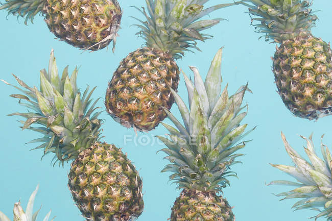 Fresh whole Pineapples on blue background — Stock Photo