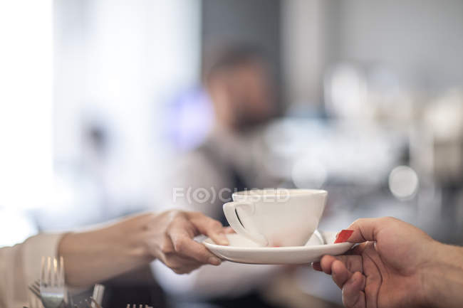 Hands holding cup of coffee — Stock Photo