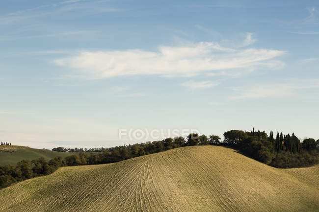Italy, Tuscany, Val d 'Orcia, rolling landscape — стоковое фото