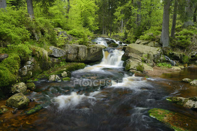 Germania, Bassa Sassonia, Harz, Cascata del torrente Warme Bode, Bassa Bodefall — Foto stock