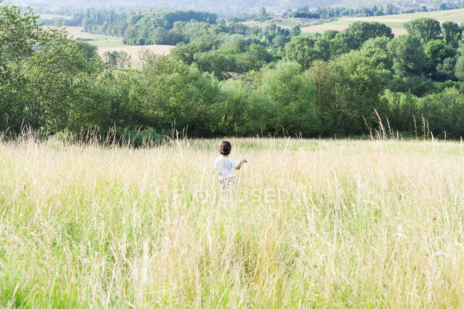 Back view of little boy on a meadow — Stock Photo