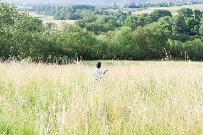 Visão traseira de pequeno rapaz em um prado — Fotografia de Stock