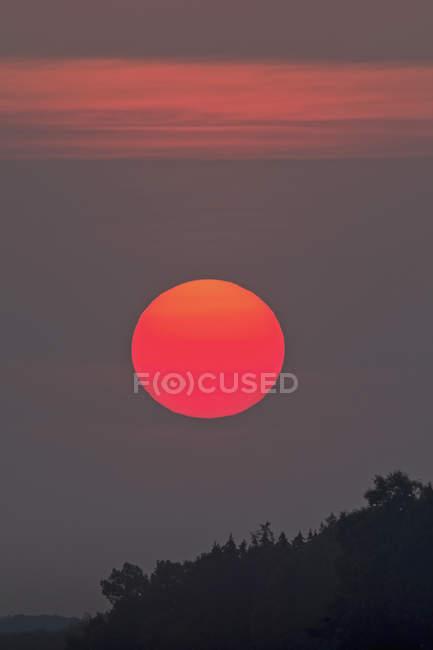 Deutschland, Bayern, Abendsonne über Wald — Stockfoto