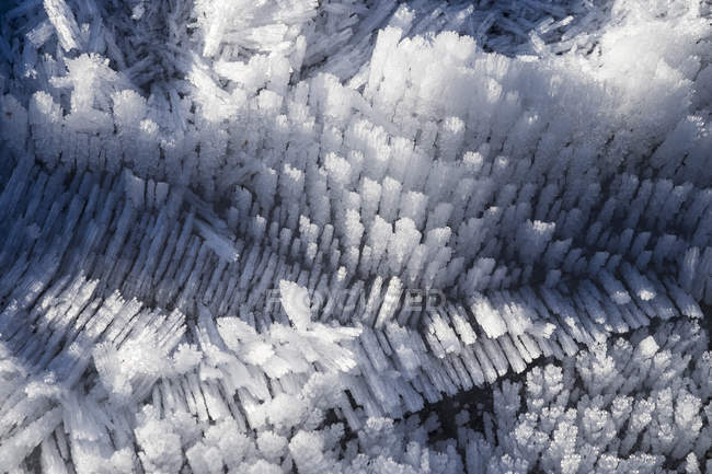 Ice crystals, close up — Stock Photo