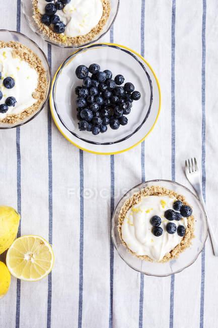 Crostatine con lemon curd e mirtilli — Foto stock