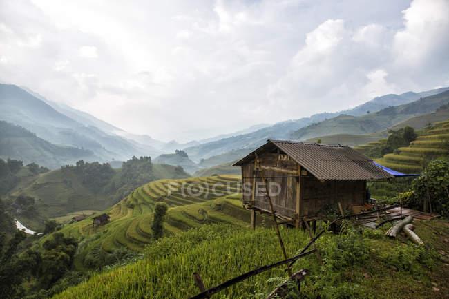Vietnam, Mu Cang Chai, Rice terraces — Stock Photo