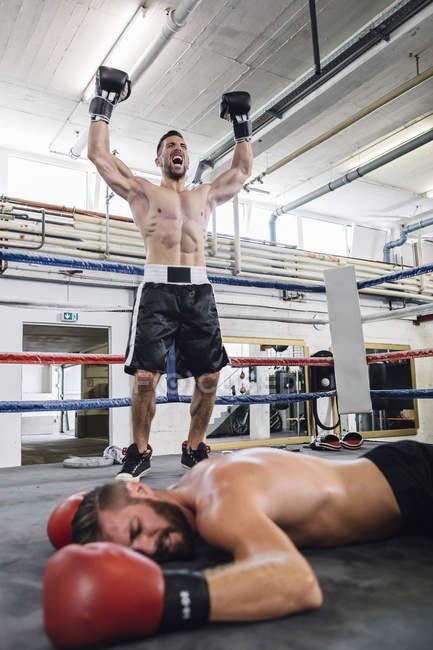 Kaukasische Boxer feiert Sieg über den Gegner — Stockfoto