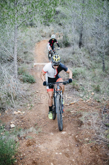 Two mountain bikers riding on forest trail — Stock Photo